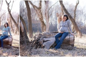 maternity portraits chicago